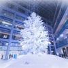 【屋内最大級のクリスマスツリー】WHITE KITTEを観てきました!