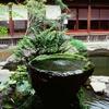 仙巌園、御殿 其の二