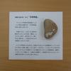 日本列島にそっくりな石