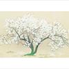 桜の日本三大名画。 …独断と偏見による。