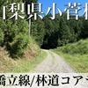 【動画】山梨県小菅村 林道橋立線/林道コアラシ線