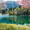 樋口沼(山形県山辺)