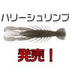 【ボトムアップ】全身が自発的に動いてくれるリアルなエビ系ワーム「ハリシュリンプ 3インチ」発売!
