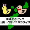 沖縄・恩納村ダイビング!クマノミパラダイス・山田ポイントで出会った生き物たち