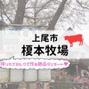 【上尾市】榎本牧場【搾りたてのミルクで作るジェラートが美味】