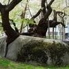 盛岡とんぼ返り~石割桜と盛岡城址公園~