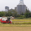 農家の学び。田んぼで、「共存」