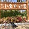 【東京・小金井公園】愛犬とゆったりお散歩☆東京で6番目に広い公園は遊び場もたくさん♪
