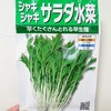 水耕栽培で「水菜」を育てています。今回で2度目の栽培です