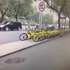 安くて便利!シェア自転車!