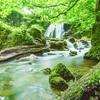 夏至の日の瞑想とデトックス