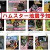【前兆】大阪府北部でM3.2の地震~ハムスターとネコが予知していた+ハムスターの地震予知能力
