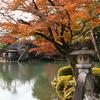 金沢で多くの秋を見つけた。兼六園と金沢城公園の紅葉を撮ってきた【2017.11.21】