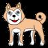 柴犬 のかわいいイラスト
