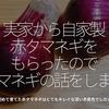 519食目「実家から自家製赤タマネギをもらったのでタマネギの話をします」初めて育てた赤タマネギはとてもキレイな深い赤紫色でした★