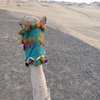 スーダンピザ無事Get!!ヌビア村の砂漠、夕日ツアーに参加してみた!!