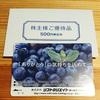 【株主優待】 ソフトクリエイトホールディングス クオカード500円分