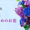 初夏におすすめのお花
