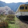 天国にいちばん近い里 川角~安野 花の駅公園~神原のしだれ桜