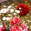 君と舞台に花束を。