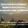 成功は幸せの鍵ではありません…アルベルト・シュバイツァー