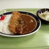 【役所メシ】札幌市手稲区役所食堂でカツカレー