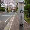 福山雅治「桜坂」のモデルになった坂と、ノスタルジーな沼部駅と多摩川と