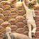 【भारत】レッドオニオン@インドの農民(※動画あり)