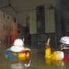 #80 台風19号 被災の教訓を生かそう 川崎・宮内自治会、避難所支援などで検討チーム