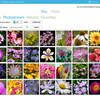 Flickrの写真を一括でダウンロードできるアプリを作った