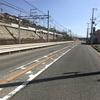 神戸マラソン観戦してきたよ♫