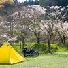 ローストビーフバーガーとお花見キャンプツーリング/ならここキャンプ場