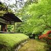 庭園66 妙心寺塔頭桂春院庭園 大刈込みが特徴的な方丈前庭と3つの庭