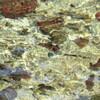 藻器堀川の川底