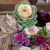 「佐久の季節便り」、「葉牡丹」寄植え、「ヒアシンス」鉢花などをJA収穫祭で…。