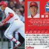 【カープ選手データ・年俸推移】新井 貴浩(1999-2018)