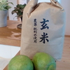 官足法足もみ☆昨日(11/7)のお客さま