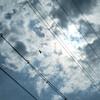 空が見てる