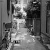 【今日の1枚】ここの路地は結構生活感が漂ってる。だってチャリの駐車が多いから。