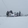厳しい気候から家を守る散居の知見。屋敷林と付属屋とカザライ。:山形県飯豊町