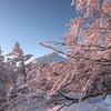 超軽量シングルバーナー BRS 3000Tを厳冬期の雪山登山での使用レビュー