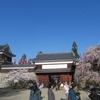 【人生ひとり旅】上田城の桜