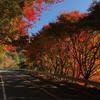 秋の昇仙峡サイクリング