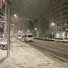 大雪だったけど積もって無いのは町会のお陰ではないかと考える。