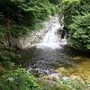 【日帰りトレッキング】南アルプスの天然水!名水百選の白州・尾白川へ