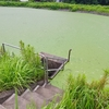 平九郎堰(千葉県長柄)