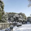 雪景色@桃山御陵