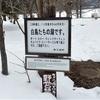 2月のA4カレンダーは屈斜路湖(くっしゃろこ)で白鳥と混浴!?