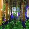 【マジョレル庭園|レビュー】イブ・サンローランもお気に入り!モロッコ・マラケシュの人気インスタ・スポット!