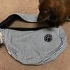 【わんこ】通院時にも役立つ!小型犬を抱いて移動するならショルダー型のスリングケースがおすすめ!